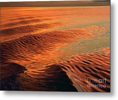 Metal Print featuring the photograph Florida Bay by Doug Herr