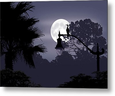 Florida Moonlight Metal Print by Ginny Schmidt