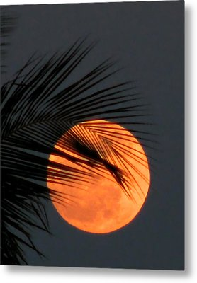 Florida Moonrise Metal Print by Peg Urban