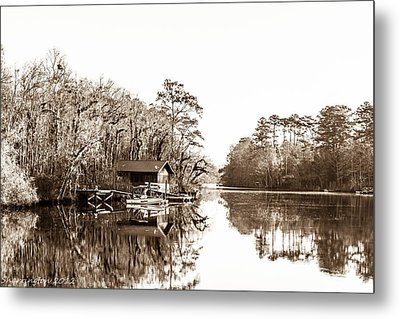Metal Print featuring the photograph Florida by Shannon Harrington