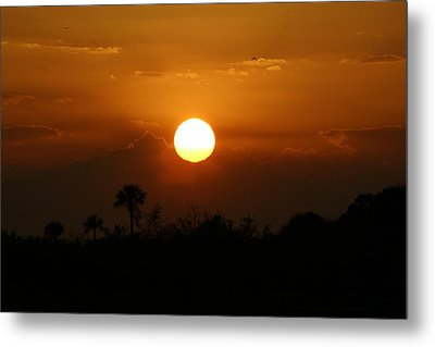 Metal Print featuring the photograph Florida Sunset by Jeanne Andrews