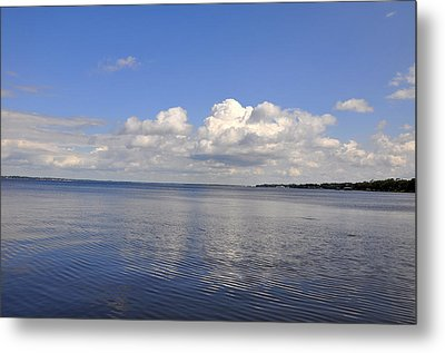 Metal Print featuring the photograph Floridian View by Sarah McKoy
