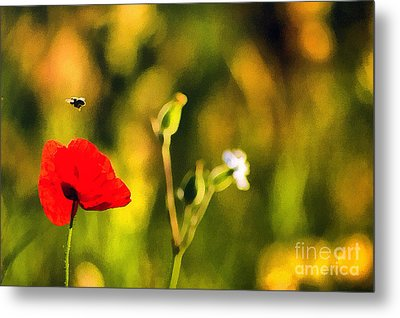 Flower And Bee Metal Print by Odon Czintos