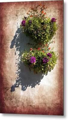 Flower Baskets Metal Print by Svetlana Sewell