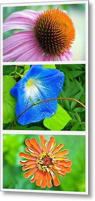 Flower Collage Part Two Metal Print by Susan Leggett
