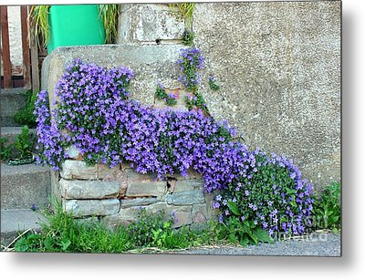 Flowered Steps Metal Print by Rene Triay Photography