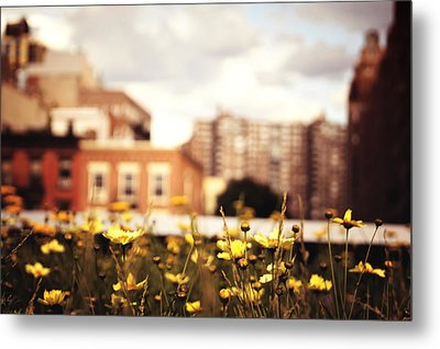 Flowers - High Line Park - New York City Metal Print by Vivienne Gucwa