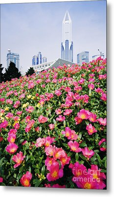 Flowers And Architecture Around Peoples Square Metal Print by Jeremy Woodhouse