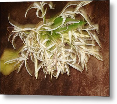 Flowers Metal Print by Indrani Moitra