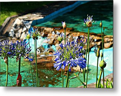 Flowers Metal Print by Jenny Senra Pampin