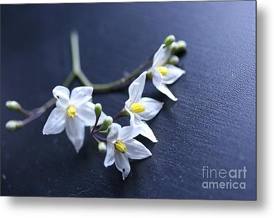 Flowers On A Table Metal Print
