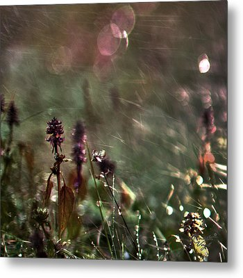 Flowers Metal Print by Renata Vogl