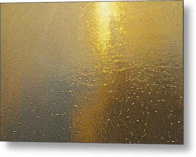Flowing Gold 7646 Metal Print by Michael Peychich