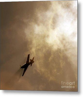 Flying High Metal Print by Angel  Tarantella