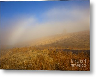 Fog Bow At Lookout Point Metal Print by Mike  Dawson