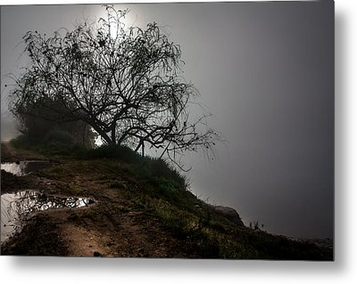 Metal Print featuring the photograph Fog Day by Edgar Laureano