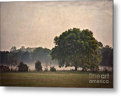 Metal Print featuring the photograph Foggy Country Morning by Cheryl Davis