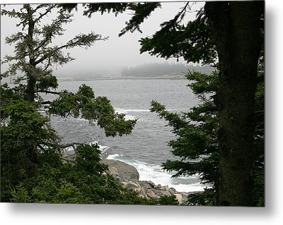 Foggy Day In Maine Metal Print by Jeanne Andrews