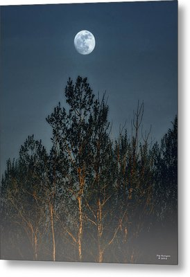 Foggy Forest With Full Moon Metal Print by Peg Runyan