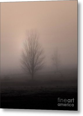 Metal Print featuring the photograph Foggy Pasture by Deborah Smith