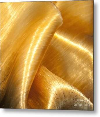 Metal Print featuring the photograph Folding Gold by Artist and Photographer Laura Wrede