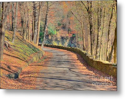 Follow The Path Metal Print by Kathleen Struckle