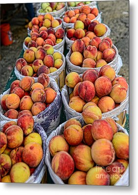 Food - Harvested Peaches Metal Print by Paul Ward