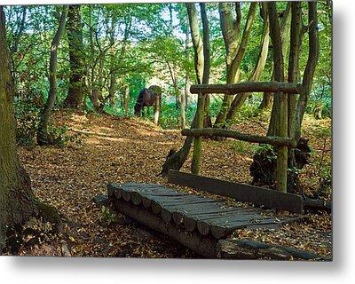 Footbridge To....... Metal Print