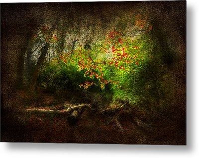 Forbidden Woods Metal Print by Svetlana Sewell
