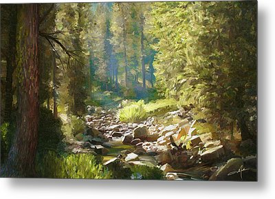 Forest Creek Metal Print by Dale Jackson