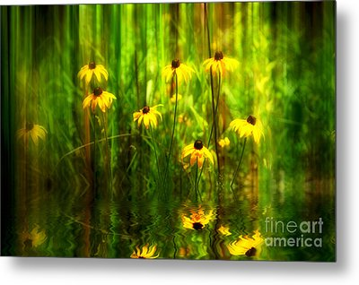 Forest Edge Metal Print by Elaine Manley