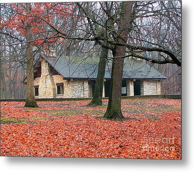 Forest Field House 1 Metal Print by Cedric Hampton