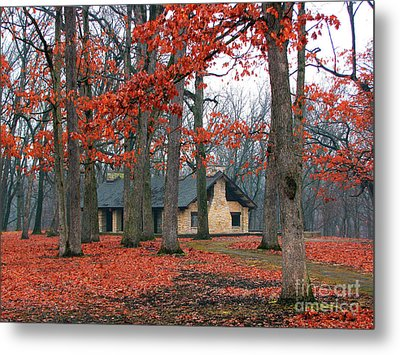 Forest Field House 2 Metal Print by Cedric Hampton
