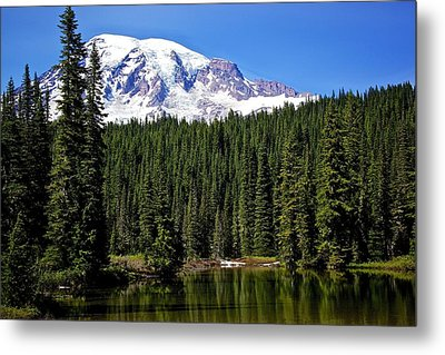 Metal Print featuring the photograph Forest Reflections by Joe Urbz