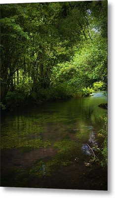 Forest River Metal Print by Svetlana Sewell