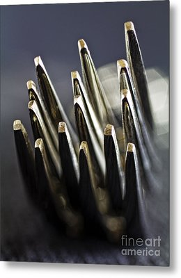 Fork-it Metal Print by Elena Nosyreva