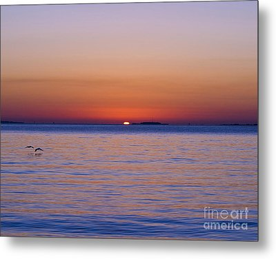 Fort Sumter Sunrise Metal Print by Al Powell Photography USA