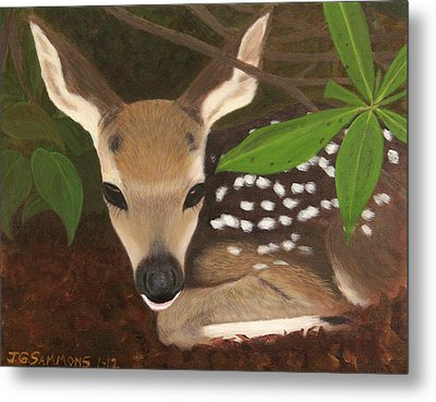 Metal Print featuring the painting Found A Fawn by Janet Greer Sammons