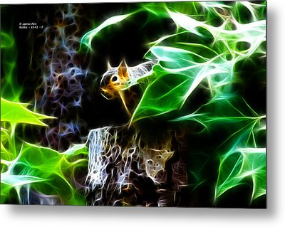 Fractal - Peek A Boo II - Robbie The Squirrel - 8242 Metal Print by James Ahn