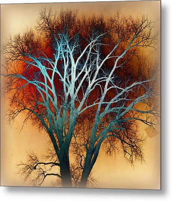 Freaky Tree 1 Metal Print by Marty Koch