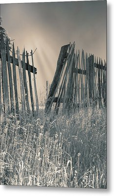 Metal Print featuring the photograph Freedom by Mary Almond