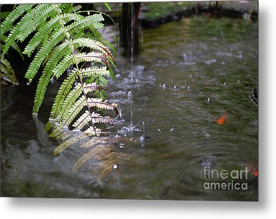 French Quarter Courtyard Fountain Macro New Orleans Metal Print by Shawn O'Brien