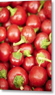 Fresh Cherry Peppers Metal Print by Cameron Davidson