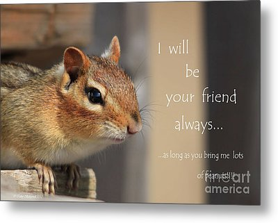 Metal Print featuring the photograph Friend For Peanuts by Cathy  Beharriell