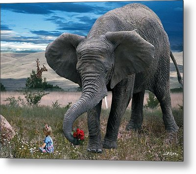 Friends Metal Print by Bill Stephens