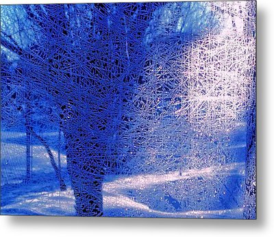 Metal Print featuring the photograph Frost Etching by Joan Hartenstein