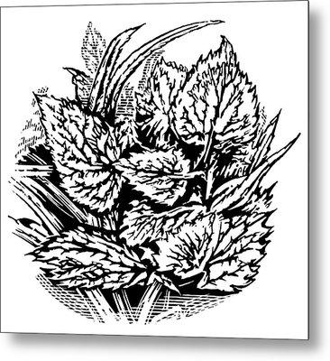 Frost On Leaves, Woodcut Metal Print