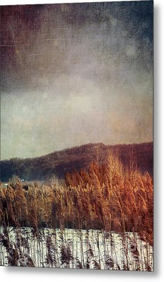 Frosty Field In Late Winter Afternoon Metal Print
