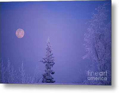 Frosty Moon Metal Print by Ronnie Glover