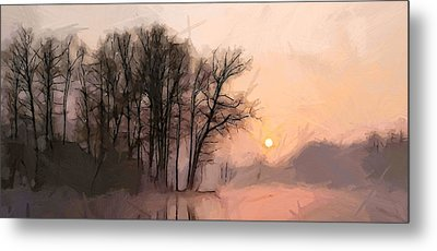 Frosty Morning At The Lake Metal Print by Steve K